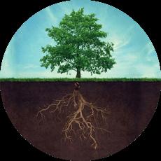 Strom ikona